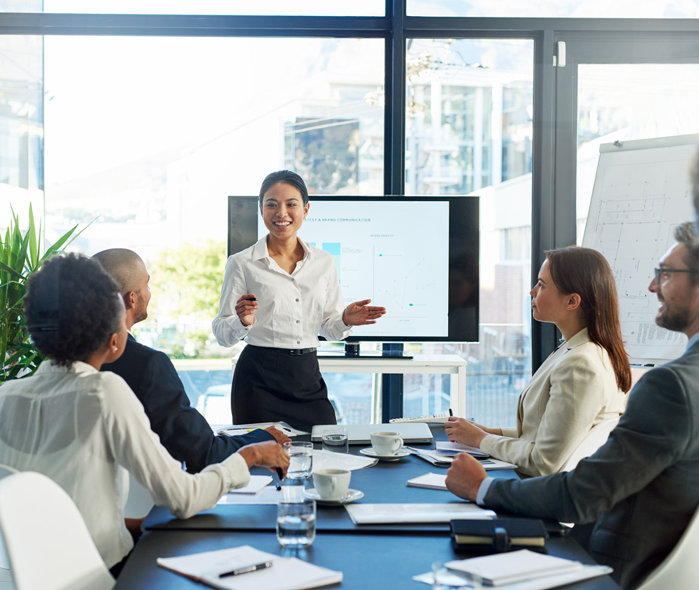 professional meeting - a woman presenting